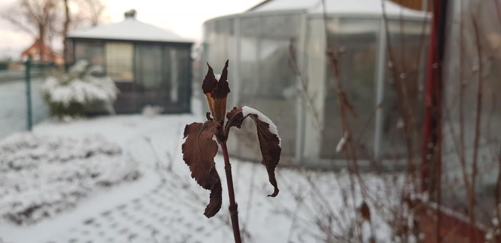ausstellung-wittstock-winter-schnee